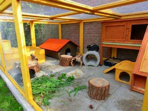 kaninchengehege innen gartengehege bauen