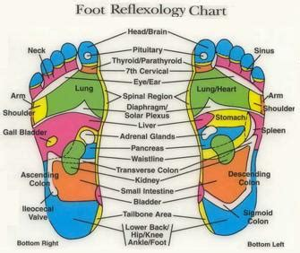 Thesis Related To Acupressure In Lowering Blood Pressure by Reflexology Cholesterol Lower Cholesterol