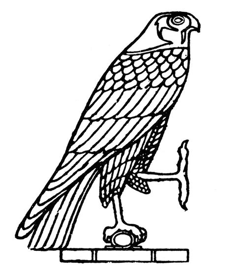 egyptian symbol falcon photograph by granger