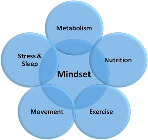 4 weight management mastering the of stress and recovery part 1