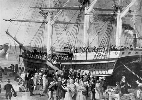 immigration boats 1800s a timeline of immigration in buffalo buffalo spree