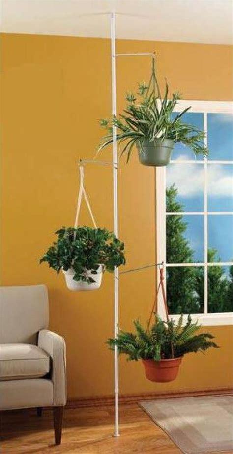 amazoncom spring tension rod indoor plant pole