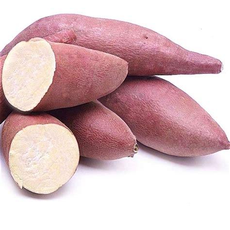 sweet potato farmville 2 wiki japanese murasaki sweet potatoes