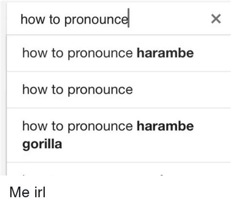 How Do I Pronounce Meme - how to pronounce how to pronounce harambe how to pronounce