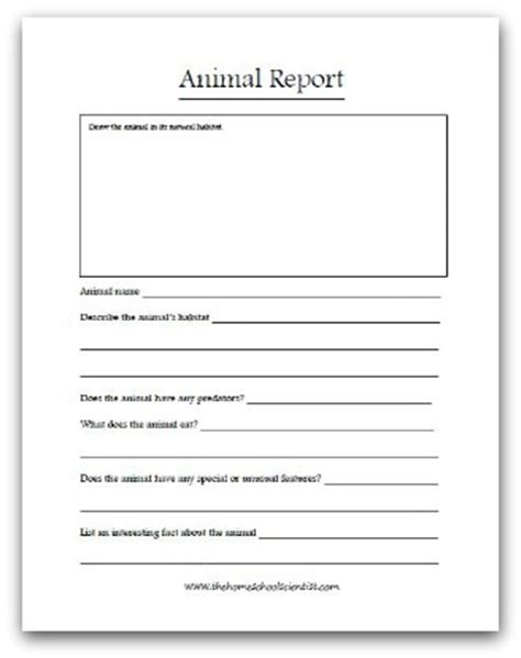 animal report template what makes a mammal a mammal the happy