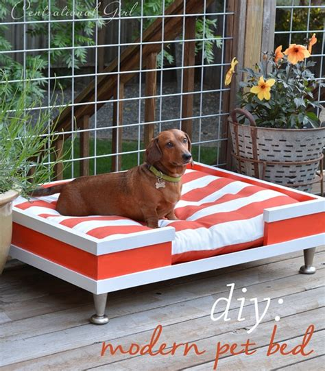 diy elevated dog bed diy modern pet bed centsational girl