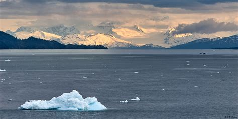 fjord seattle find and book cruises to alaska antarctica europe
