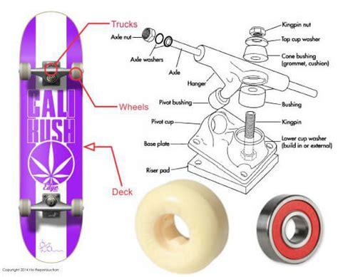 longboard parts diagram cali strong basic skateboard buying guide cali strong