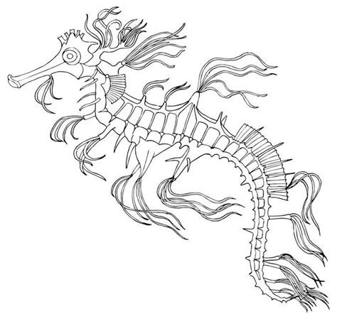 sea dragon coloring page mystical sea dragon coloring pages mystical best free