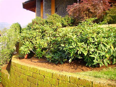 muretti giardino foto giardino con muretti in tufo sant omobono terme