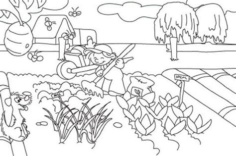 Vegetable Garden Coloring Pages Printable Food Vegetable Garden Coloring Pages