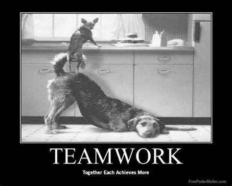 google images teamwork teamwork health serivces