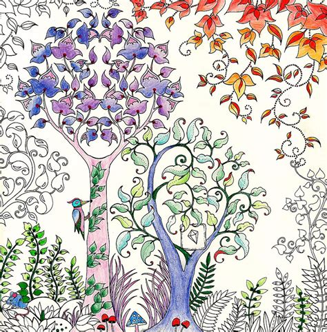 coloring book for adults johanna basford artist draws coloring books for adults and sells