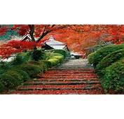 1920X1080 HD Garden Wallpaper  WallpaperSafari