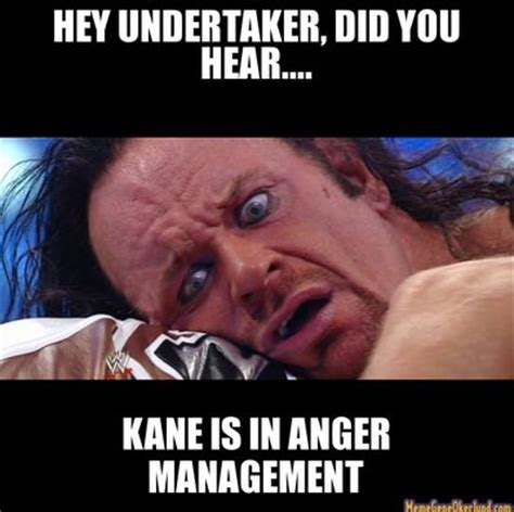 Wwe Memes Funny - 122 best wwe meme world images on pinterest live dallas