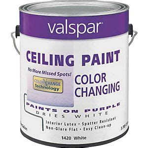 Kilz Color Change Ceiling Paint by Paint