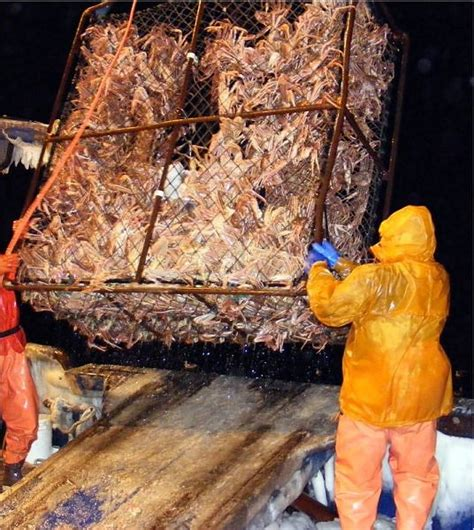 the crab fishermen of alaska sharenator