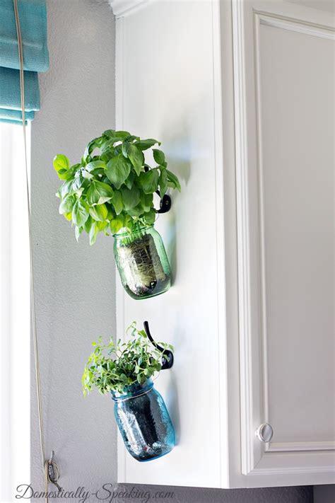 hanging herbs hanging herb mason jars domestically speaking
