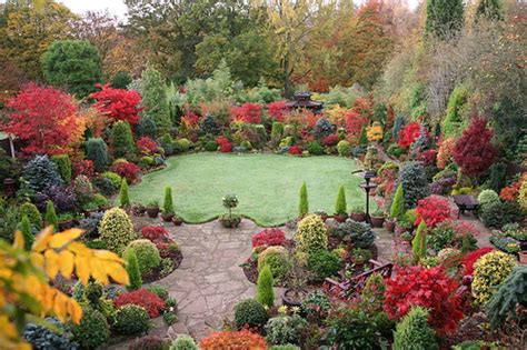 autumn garden winter gardening tips for march and april in new zealand