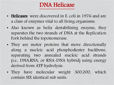 7 proteins involved in dna replication enzymes involved in dna replication