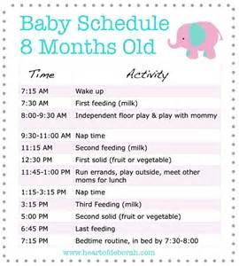 sle baby schedule 8 months of deborah