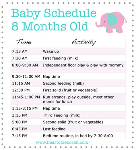 meal pattern for 1 year old sle baby schedule 8 months old heart of deborah