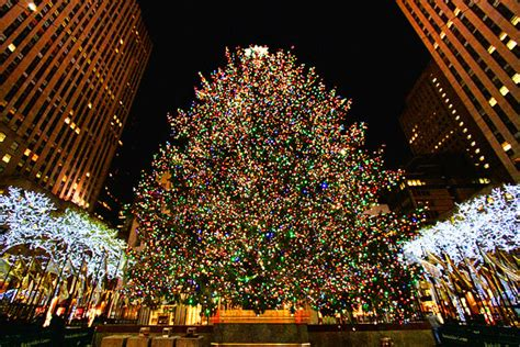 times square christmas tree time in new york passionread