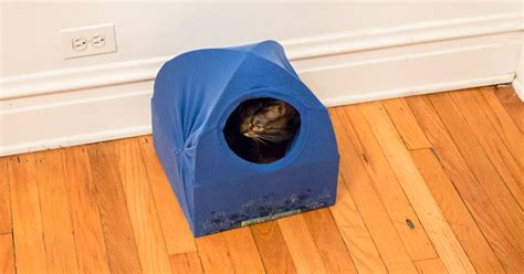 cat tent bed diy cat tent bed