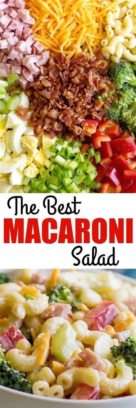 best ever creamy macaroni salad salads pinterest best 25 pasta salad recipes ideas on pinterest pasta