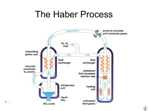 diagram of haber process flow diagram haber process image collections how to