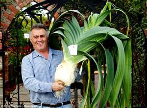 leek swing county durham gardener reveals his secret after growing