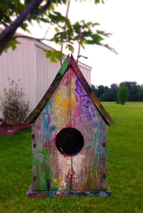 colorful bird houses free images nature outdoor bird house wildlife