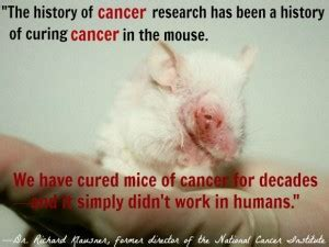 Reasons For Animal Testing by Quotes Against Animal Testing Quotesgram