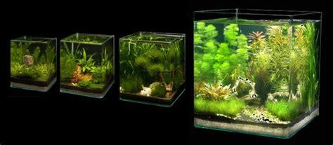 nano cube dennerle aquariumplus webwinkel