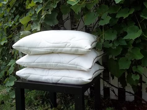 Millet Hull Pillow by Millet Hull Pillow Kit