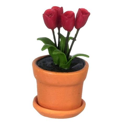 miniature red plumeria potted plant flower fairy red tulips in clay pot
