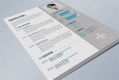 resume exles modern sophistry skin care 1000 ideas about executive resume template on pinterest resume templates marketing resume