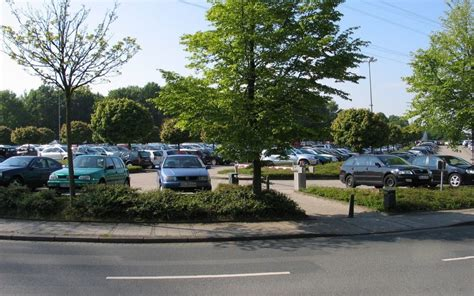 best seattle tree lot how to choose the best parking lot trees for your business