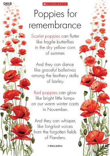 poppy pappy day lyrics remembrance day remembrance day poem to use as a