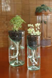 self watering planter made from recycled wine bottle
