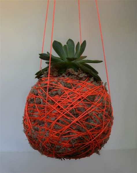 Planters Plants by Diy Hanging Moss Planter L Hanging String Plant