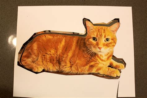 diy cat crafts custom cat pillow diy tutorial