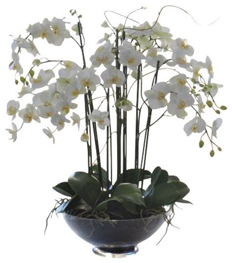 White Hanging Planter phalaenopsis in glass flower arrangement traditional