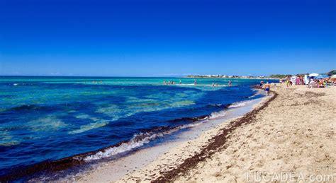 punta prosciutto spiagge da sogno punta prosciutto salento