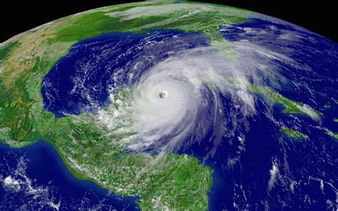 printable hurricane images stock photo hurricane wilma satellite photo