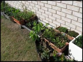 best gardening tips container gardening vegetablesraised garden beds
