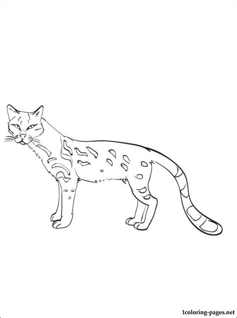 Ldshadowlady Coloring Pages Of An Osalot Coloring Pages Ocelot Coloring Page