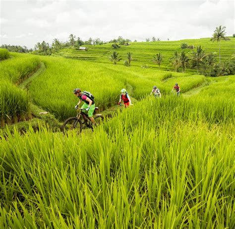 Motorrad Ausleihen Bali by Bali Tipps F 252 R Einen Entspannten Urlaub Auf Der Insel Welt