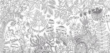 johanna basford coloring book illustrator creates coloring books and sells more