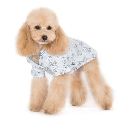 is pineapple ok for dogs pineapple shirt shirts bowwowsbest